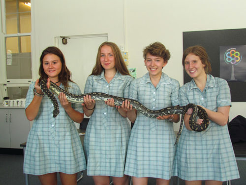 4 Brighton Secondary School students with snake