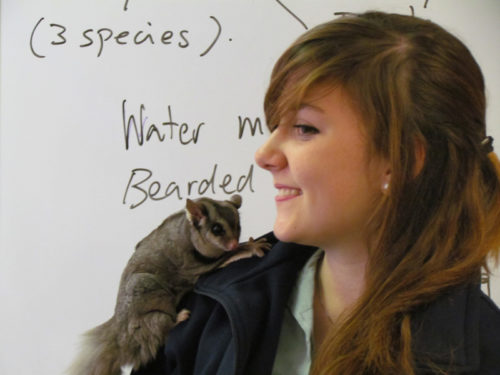 Student with Australian wildlife